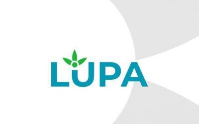 Lupa(위치기반 매물 거래 어플리케이션 – 자체 개발 프로젝트)